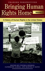 Cover image for Bringing Human Rights Home