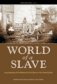 World of a Slave cover image