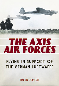 The Axis Air Forces cover image