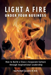 Light a Fire under Your Business cover image